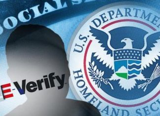 e-verify, homeland security, customs, immigration
